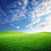 Field of grass and perfect sunset sky — Foto Stock
