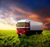 Field of grass and truck — Stock Photo