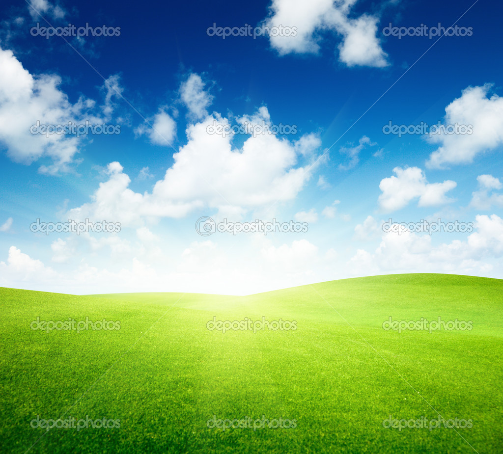 Field Blue Sky Field of Green Grass And Blue