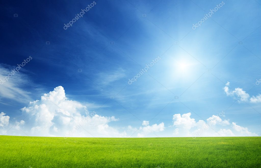 Field of grass and perfect sky — Foto de Stock   #4493155