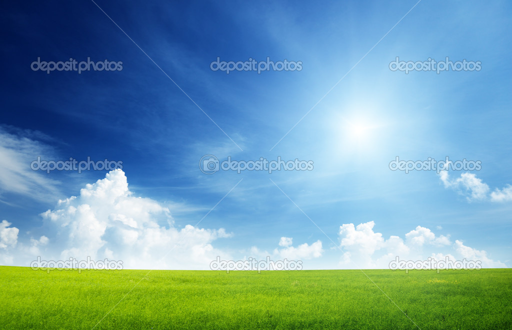 Field of grass and perfect sky — 图库照片 #4493155