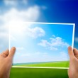 Photo of green field in hands — Stock Photo