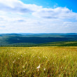 North mountain tundra - Stock Photo