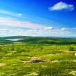 North mountain tundra — Stockfoto #4607600