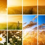 Man and sunset — Stock Photo