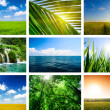 Summer lanscapes collage — 图库照片