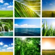 Summer lanscapes collage — Stock fotografie