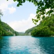 Royalty-Free Stock Photo: Lake in deep forest