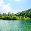 Royalty-Free Stock Photo: Green water lake