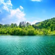 Green water lake — Stock Photo