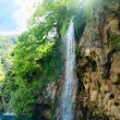 Stock Photo: Waterfall in deep forest