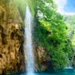Waterfall in deep forest — Stock Photo #4608230