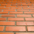 Red bricks and sun - Photo
