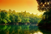 Sunset in jungle of Thailand — Stock Photo