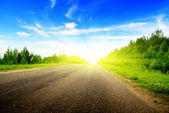 Road and sunny summer day — Stock Photo