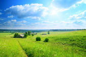 Perfect summer day in russian village — Stock Photo