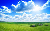Summer day in Russian village — Stock Photo