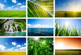 Summer lanscapes collage — Stock Photo