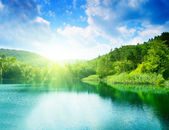 Green water lake in forest — Foto Stock