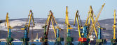 Cranes in port — Stock Photo