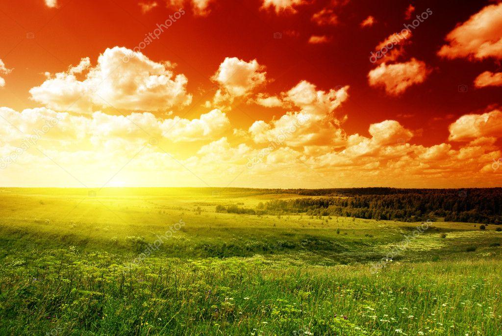 Фотообои Летний пейзаж