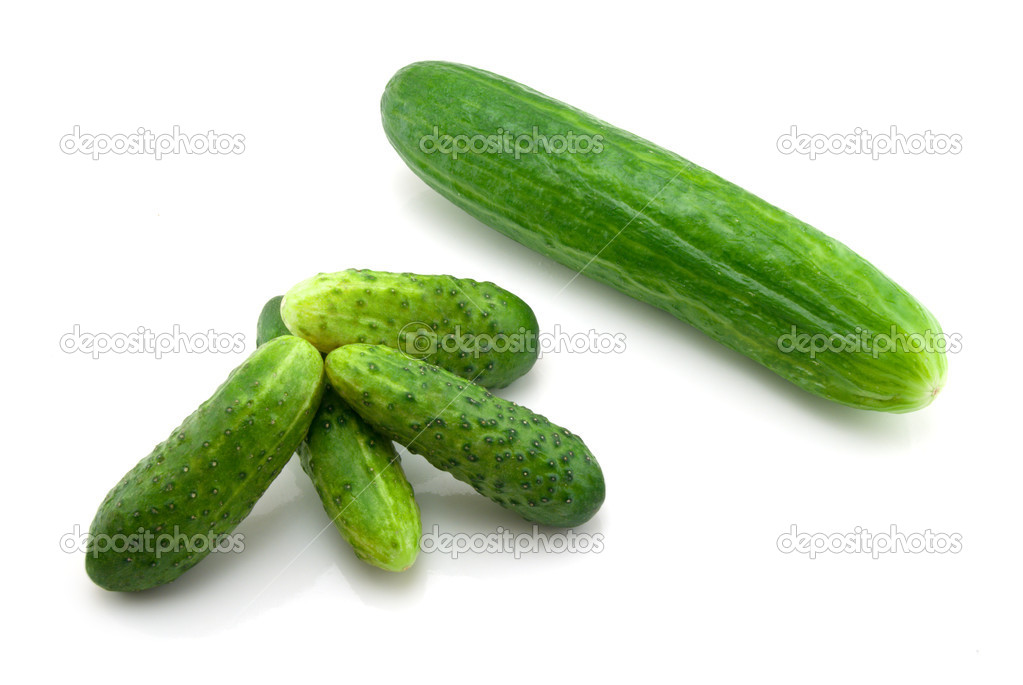 Fresh small cucumbers isolated on the white background  Stock Photo #4608243