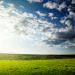 Spring field and sunset - Stock Photo
