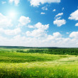 Summer sunny day and field of flowers — Stockfoto #4622199