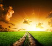 Pôr do sol e estrada de chão — Foto Stock