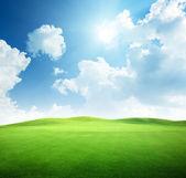 поле травы и идеальное небо — Стоковое фото
