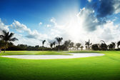 Zonsondergang op golf veld — Stockfoto