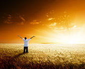 Happy young man rest on wheat field — Stock Photo