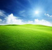 Campo verde y azul cielo — Foto de Stock