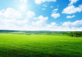 Harvested grass in roll and perfect sunny day — Stock Photo