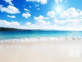 Kum plaj karayip denizi — Stok fotoğraf