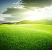 Green field and sunset — Stockfoto