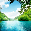Foto Stock: Lake in deep forest