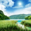 Lake in deep forest — Stock Photo #4776697
