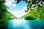 Jezioro w lesie — Zdjęcie stockowe