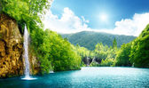 водопад в глубоком лесу — Стоковое фото