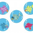 Cartoon fishes — Stock Vector