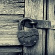 Old lock on a wooden door — Stock Photo #4537029