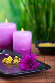 Chryzantéma a mořská sůl a svíčky — Stock fotografie