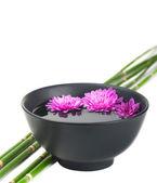 菊花在黑碗和竹 — 图库照片