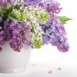 Lilacs in white jug — Stock Photo #5226596