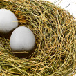 Royalty-Free Stock Photo: Eggs in Nest