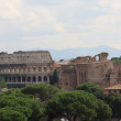 Vue de Rome — Stock Photo #4529394