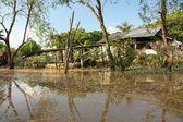 湄公河 — 图库照片
