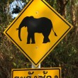 Attention éléphants - Stock Photo