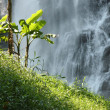 Stock Photo: Cascade thaïlandaise